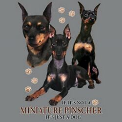Not Minature Pinscher A Dog Ladies Womens Small-4 X Large Ladies Tank Tops