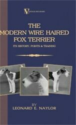 The Modern Wire Haired Fox Terrier: Its History Points & Training (Hardback or
