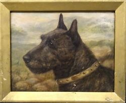 Fine 19th Century Scottish Terrier Dog Head Portrait Antique Oil Painting