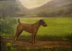 19th Century Irish Terrier Dog Portrait