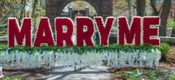 Marry Me Sign Flowers Big Outdoors Love Proposal Decor Red Newandnbsp