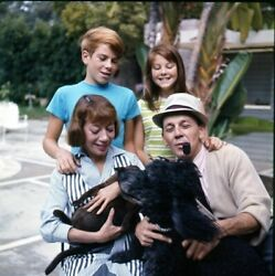 Lot Of 6 1960s Imogene Coca And Family Original Photo Transparency