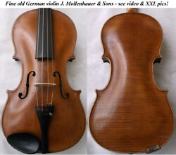 Old German Master Violin Mollenhauer And Sons - Video - Antique バイオリン скрипка 225