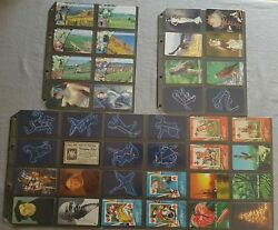 Phone Cards A-cards Vintage 2003 A-01-40/2003 Complete Mint 40st
