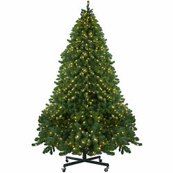 Northlight 14' Full Olympia Pine Artificial Christmas Tree Wheels-Warm Clear LED