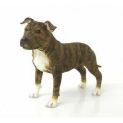 Staffordshire Terrier Brindle Staffy Dog Ornament Figurine Gift Boxed