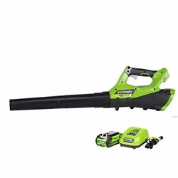 40 Volt Leaf Blower Kit Battery Operated Powered Cordless Electric 40v Best Yard