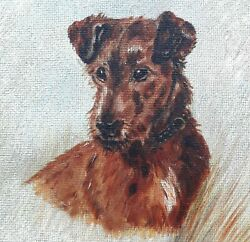 Irish Terrier Oil On Board Dog Painting In Its Original Wooden Frame