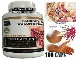 Potent Candida Cleanse Infection Treatment And Detox With Herbs Enzymes Yeast 1