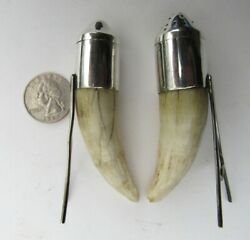 Antique Sterling Silver And Crocodile Tooth Hunting Trophy Salt And Pepper Shakers