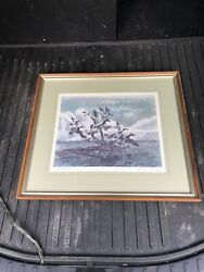 2 Framed And Signed Prints By James Colway Ducks Birds Vernon Ny Oneida Ltd 23x21