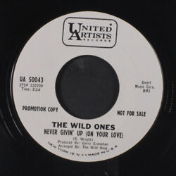 Wild Ones Never Givinand039 Up On Your Love / For Your Love I Would Do Most Anyt