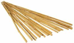 Growt Hgbb6 - 6 Foot Long Bamboo Stakes, Natural Finish, Pack Of 25 - Strong,