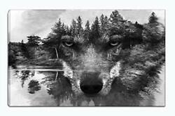 Wolf Canvas Wall Art Animal Paintings Picture Black And White Black And White