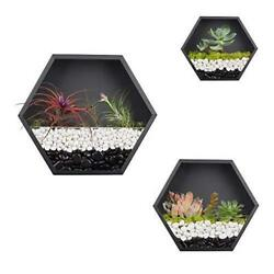 Hanging Hexagon Basket Hanging Wall Planters Metal Vase Retro Air Plant Holder V