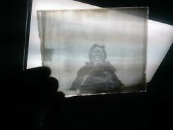 The Stanley Dry Plate Glass Negative Box Images Dog Antique Photographs Photos