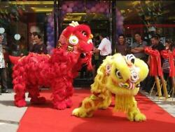 Lion Dance Mascot Costume Natural Wool Southern Lion For Two Adult Party Gifts