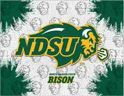 North Dakota State Bison Hbs Gray Green Wall Canvas Art Picture Print