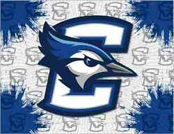 Creighton Bluejays Hbs Gray Blue Wall Canvas Art Picture Print