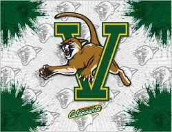Vermont Catamounts Hbs Gray Green Wall Canvas Art Picture Print