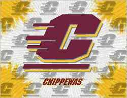 Central Michigan Chippewas Hbs Gray Wall Canvas Art Picture Print