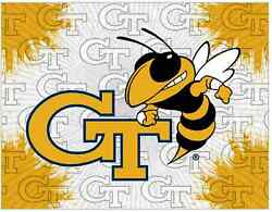 Georgia Tech Yellow Jackets Hbs Gray Gold Wall Canvas Art Picture Print