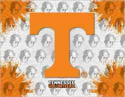 Tennessee Volunteers Hbs Gray Orange Wall Canvas Art Picture Print