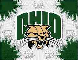 Ohio Bobcats Hbs Gray Green Wall Canvas Art Picture Print