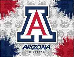 Arizona Wildcats Hbs Gray Red Navy Wall Canvas Art Picture Print