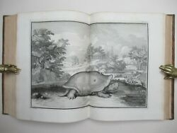 Natural History 1731 Zoology Perrault Histoire Naturelle Science Plante Zoologie