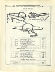 1895 Paper Ad 6 5 Newhouse Oneida Community Grizzly Bear Steel Leg Hold Trap