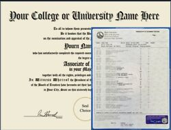 CUSTOM PRO MADE ANY COLLEGE OR UNIVERSITY DIPLOMA 2 FULL SETS OF TRANSCRIPTS