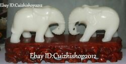 17 Natural White Jade Carving Fengshui Auspicious Elephant Animal Statues Pair