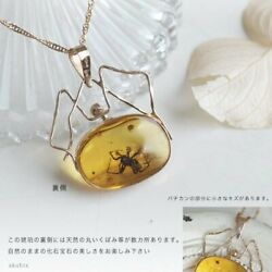 Amber Necklace With Insects K18 Pink Gold Collection Rank With Chain Y-a111