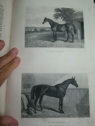 1870 Rural Life Management Of Horses Dogs By Sherer 2 Vols Farming Shooting