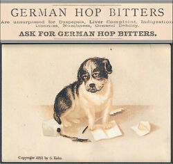 Springport Mich German Hop Bitters White Wine Of Tar Syrup Cure Ink Trade Card