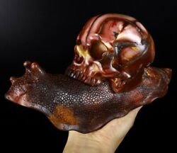 Huge 10.4 Colorful Mookaite Jasper Carved Crystal Skull And Snail531