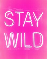 Stay Wild Pink Neon Sign Light Acrylic 17x14 Real Glass With Dimmer Q246