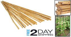 25pack Bamboo Stake Natural Finish Strong And Durable Diameter 13-17mm Lightweight