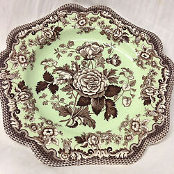Spode Blue Room Garden Collection Fancy Salad Plate 9 Brown Rosa Mint Green