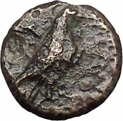 Kyme In Aeolis 350bc Eagle And Vase On Authentic Ancient Greek Coin I48599