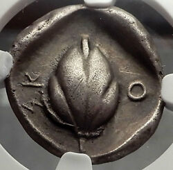 Skotussa Thessaly 440bc Horse Wheat-grain Ancient Silver Greek Coin Ngc I58233