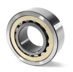 Sl024952 Ina Cylindrical Roller Bearing