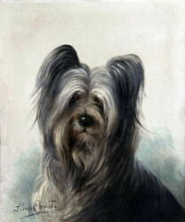 c1910~L.Cheviot Art~Very Sweet Skye Terrier Puppy Dog Profile~NEW Lg Note Cards