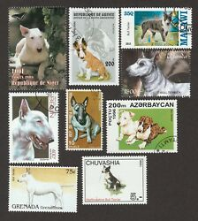 BULL TERRIER **Great Gift Idea ** Int'l Dog Postage Stamp Collection