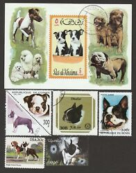 BOSTON TERRIER ** Int'l Dog Postage Stamp Collection  **Great Gift Idea**