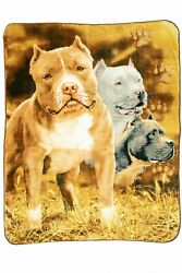 Signature Collection Pit Bull Terrier Dogs Bully Soft Plush Blanket Queen Size