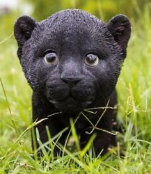 Black Panther Cub Stunning Realistic Life Like Figurine Statue Home  Garden