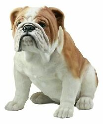 Sitting English Bulldog Statue 14.5quot;Tall Fine Pedigree Dog Breed Pet Collection