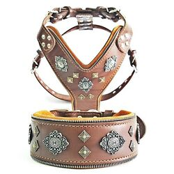 Bestia Aztec Set Harness And Collar. Big Dogs, Top Quality